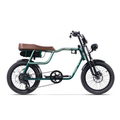 Bicicleta Electrica - Partizan Verde